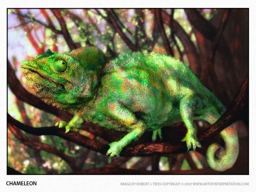 Chameleon - By Robert J. Tiess