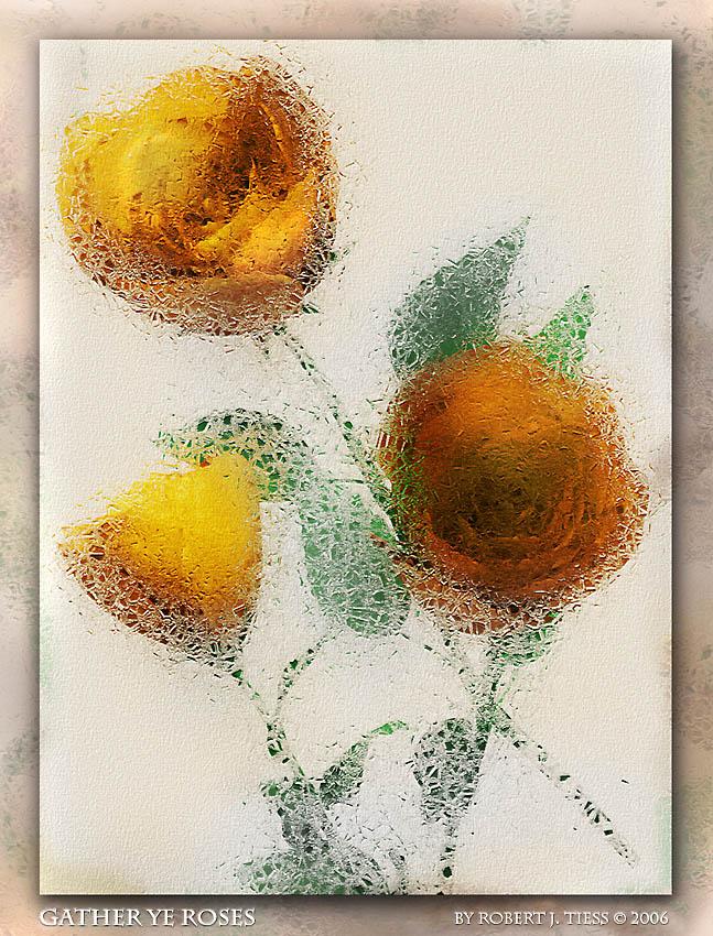 Gather Ye Roses - By Robert J. Tiess