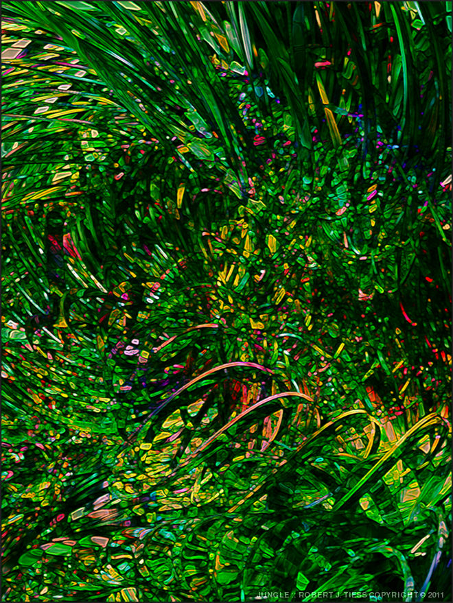 Jungle - By Robert J. Tiess