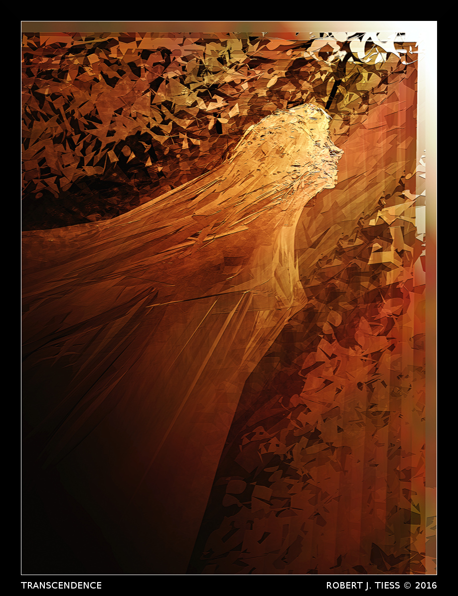 Transcendence - By Robert J. Tiess