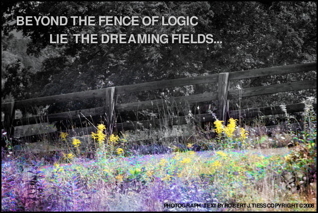 Beyond the Fence of Logic Lie the Dreaming Fields - By Robert J. Tiess
