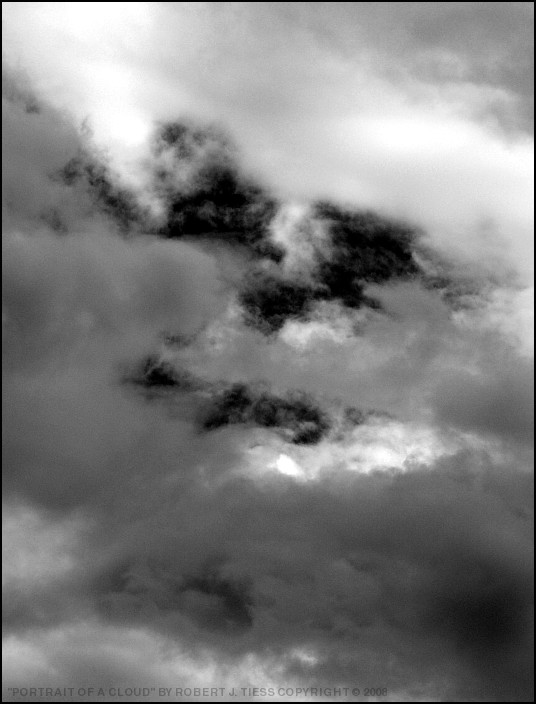 Portrait of a Cloud - By Robert J. Tiess