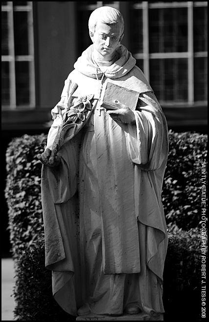 Saintly Statue - By Robert J. Tiess
