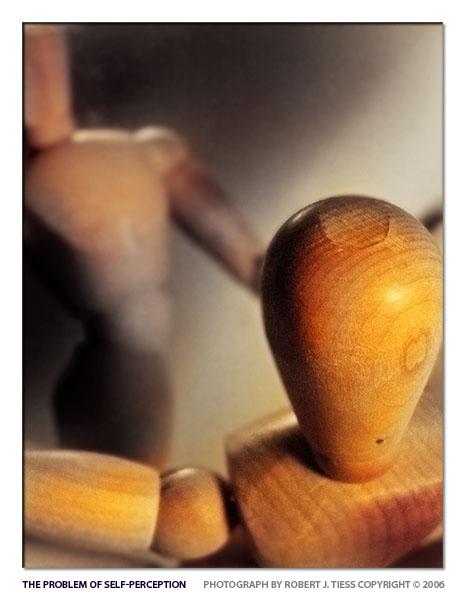 The Problem of Self-Perception - By Robert J. Tiess
