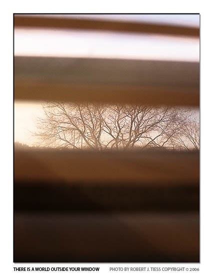 There Is a World Outside Your Window - By Robert J. Tiess